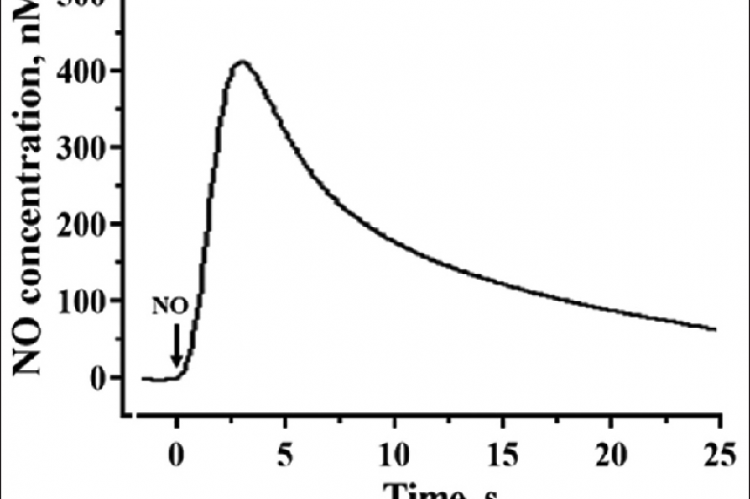Amperometric curve showing response of nitric oxide sensor to 400 nM concentration of standard nitric oxide solution (Hank's balanced salt solution buffer)