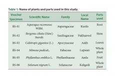 Name of plants and parts used in this study